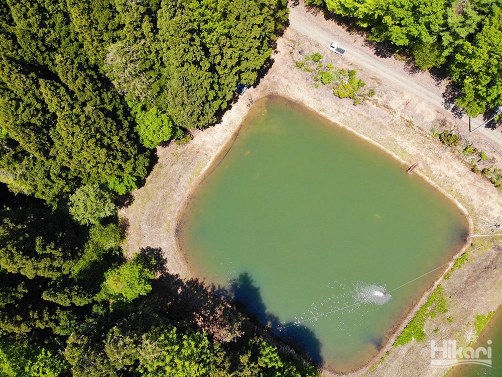 擁有絕佳天然環境的野池