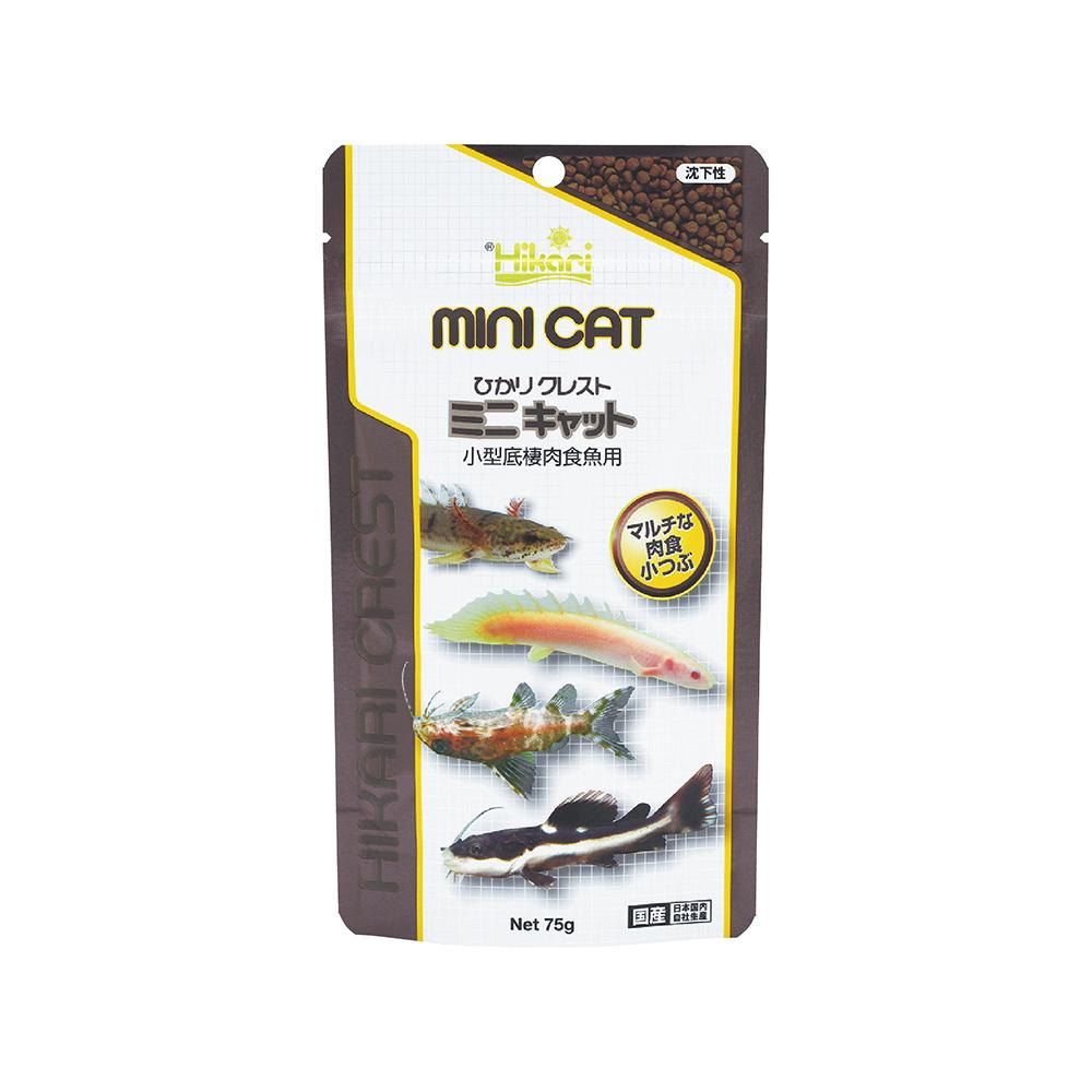 高夠力  小型肉食性底棲魚飼料